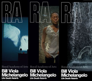 Bill Viola/Michelangelo RA Exhibition